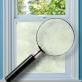 Koi Carp Window Film