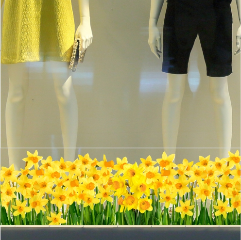 Daffodils Border Sticker