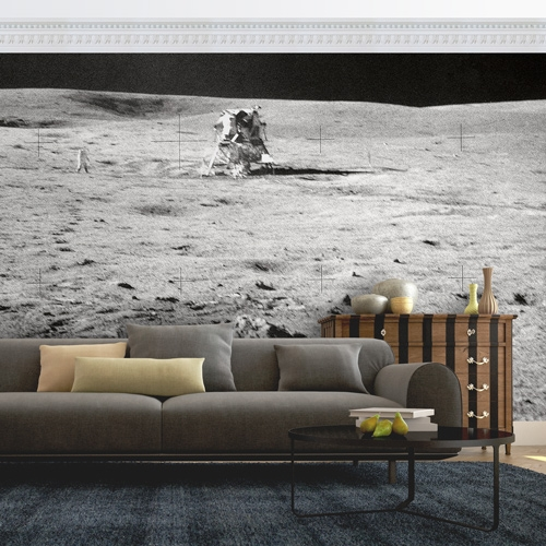Moonscape Wall Mural