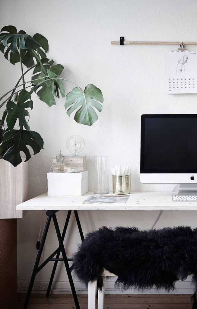 Minimalist home office setup with plant