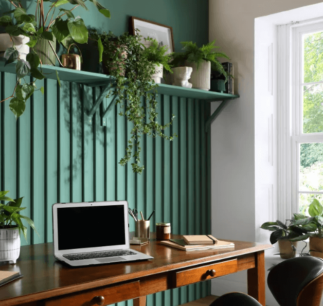 Green-coloured walls for office at home