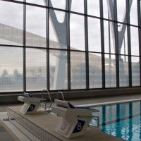 Frosted window graphics applied to swimming pool windows at Beconstree Health Leisure Centre.
