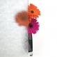 Fleur Decorative Window Film