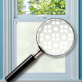 Pavo Patterned Window Film