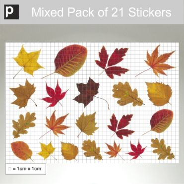Mixed Pack Of Autumn Leaf Stickers