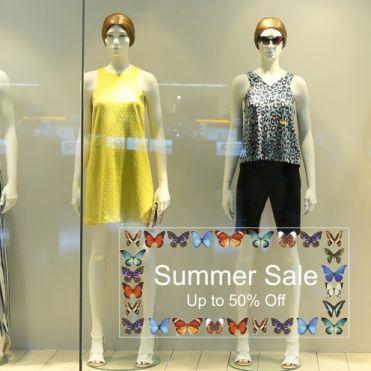 Custom Butterflies Frame
