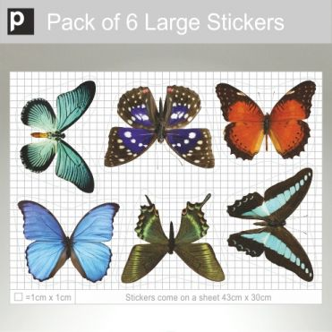 Pack Of Large Photo Realistic Butterflies