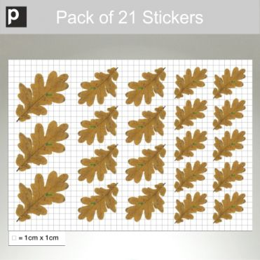 Pack Of Oak Leaves Stickers