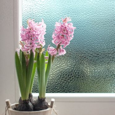 Droplets Patterned Static Window Film