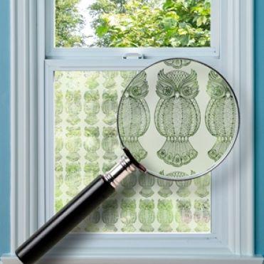 Owls Window Film