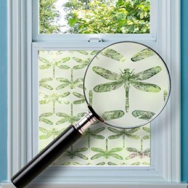 Dragonfly Window Film