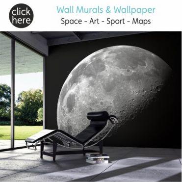 Murals & Wallpapers