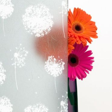Decorative Frosted Window Film