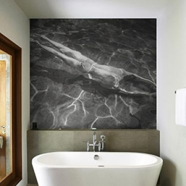Aquatic Wall Murals