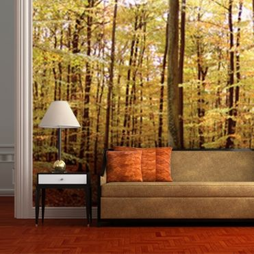 Nature Wall Murals