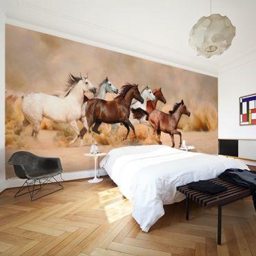 Horses Wall Mural